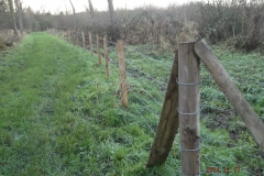 Pose de clôture barbelé