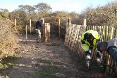 Pose de clôture ganivelle